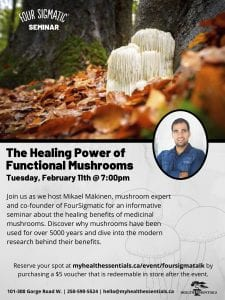 healing power of functional mushrooms